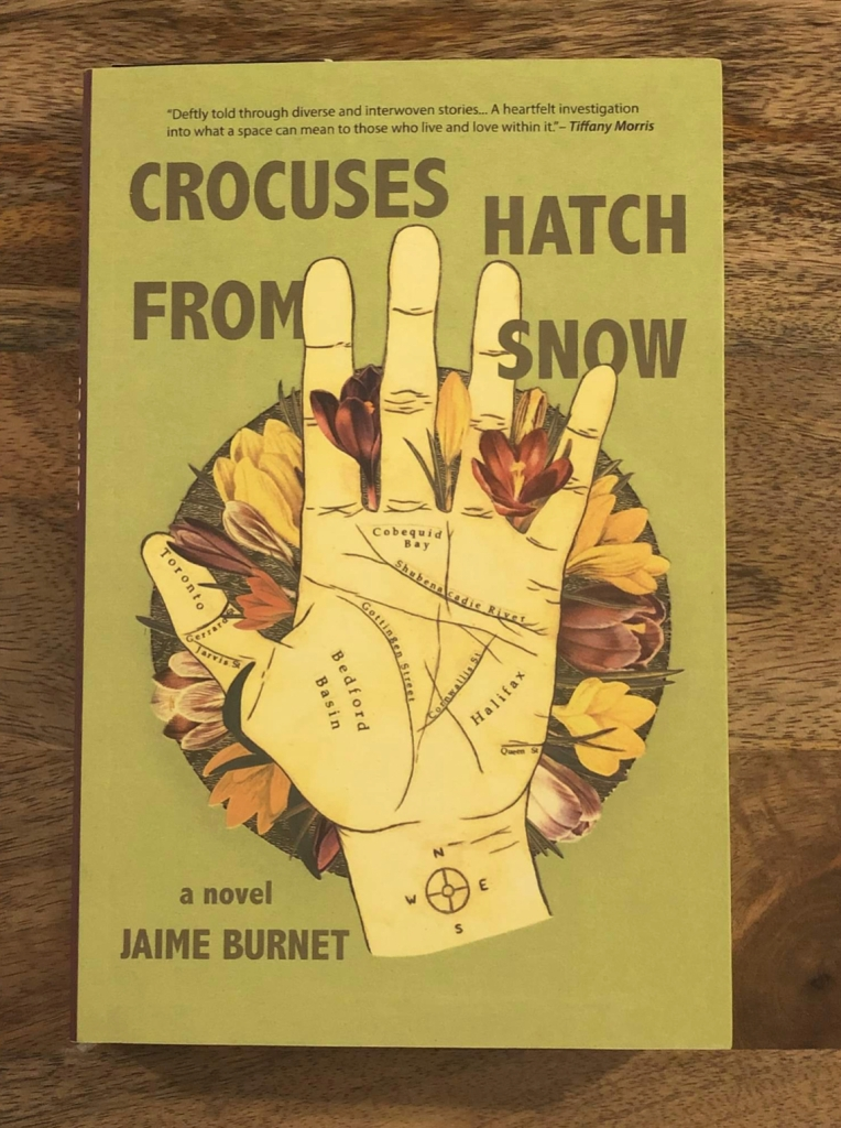 Crocuses Hatch From Snow by Jaime Burnet